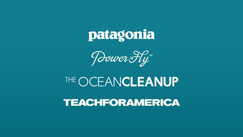 Titles of the four companies featured in the blog post, Patagonia, Power to Fly, The Ocean Cleanup, and Teach for America